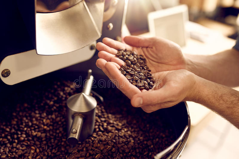 Hands over a modern appliance holding freshly roasted coffee bea stock photography