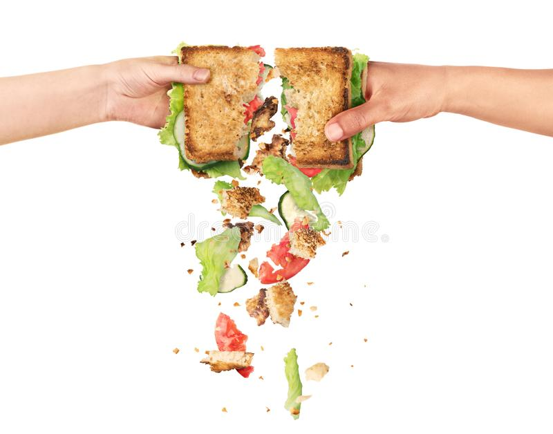 Hands of people of different nationalities tearing a sandwich from which the ingredients fall out isolated. On white background stock images