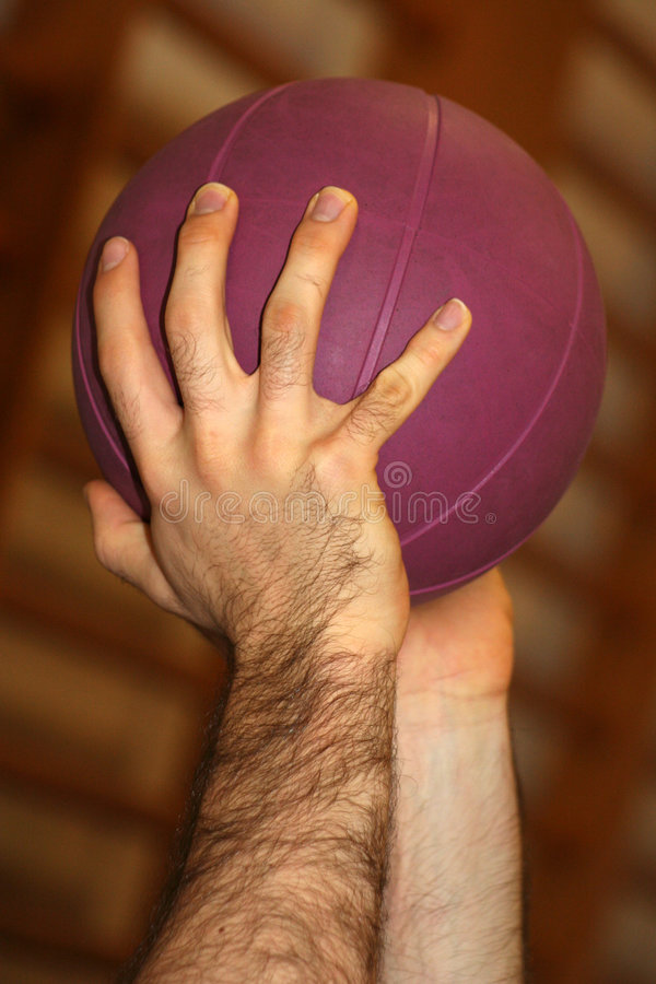 Hands and Purple Ball royalty free stock image