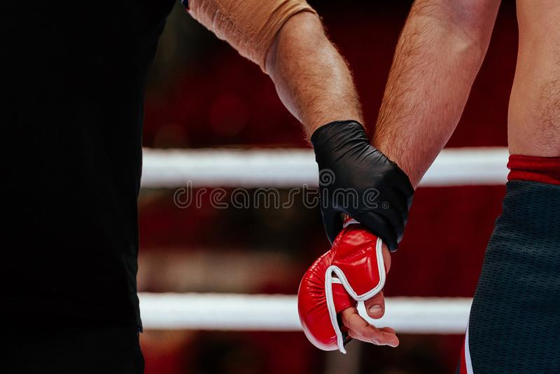 Hands of referee and MMA fighter. After fight announcement ceremony of winner stock photo