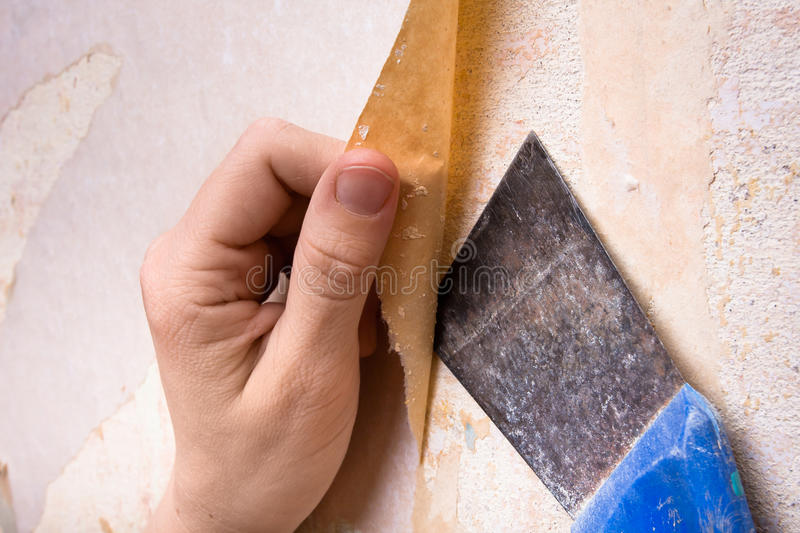 Download Hands Removing Old Wallpaper With Spatula Stock Image