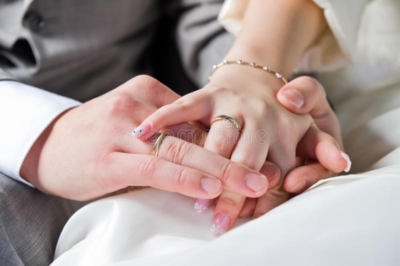 Download Hands and rings stock image. Image of gold, wedding, bride - 6634893