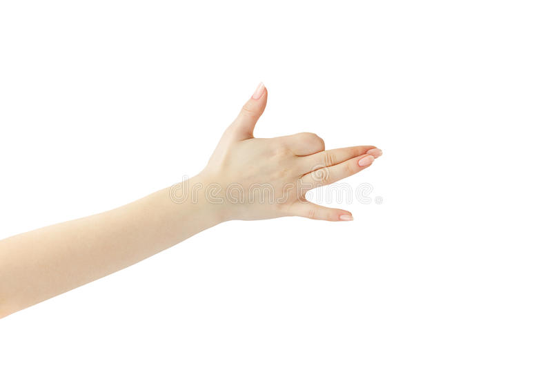 HANDS SHOWING DOG SIGN royalty free stock image
