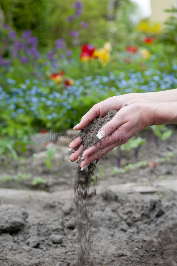 Hands with soil. Two hands with trickling soil stock image