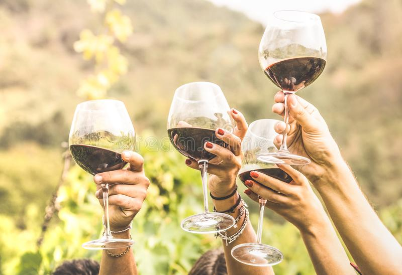 Hands toasting red wine glass and friends having fun cheering at. Winetasting - Young people on harvest time at farmhouse vineyard countryside - Youth stock photo