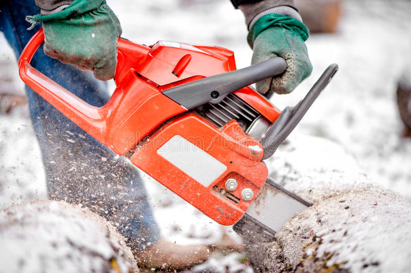 Hands using a chainsaw and cutting wood. And trees royalty free stock photography