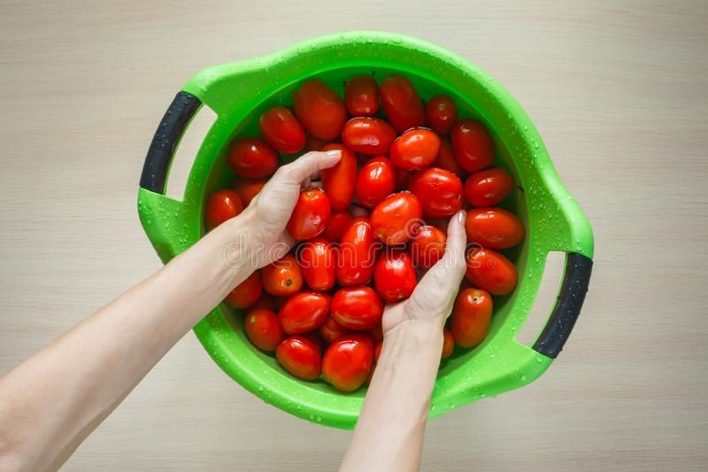 Hands wash tomatoes in a large basin. Hands wash tomatoes in a large basin royalty free stock photos