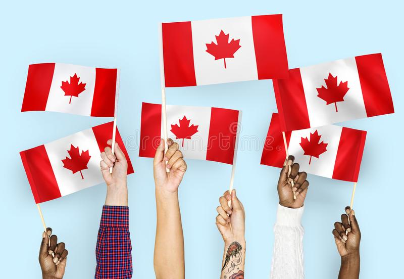 Hands waving flags of Canada royalty free stock photography