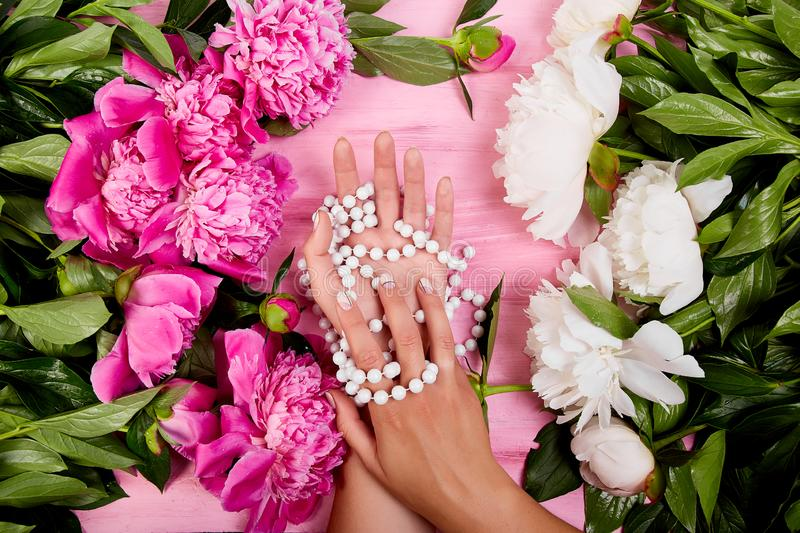 Hands of woman florist holding beautiful bouquet of peonies royalty free stock images