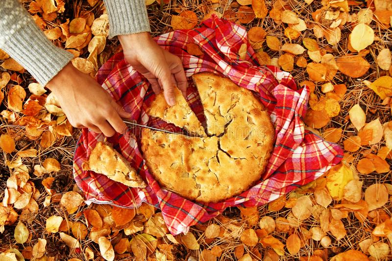 Hands of woman with pieces of apple pie on a red checkered towel and dry yellow autumn leaves. Hands of woman with pieces of apple pie on a red checkered towel royalty free stock photos