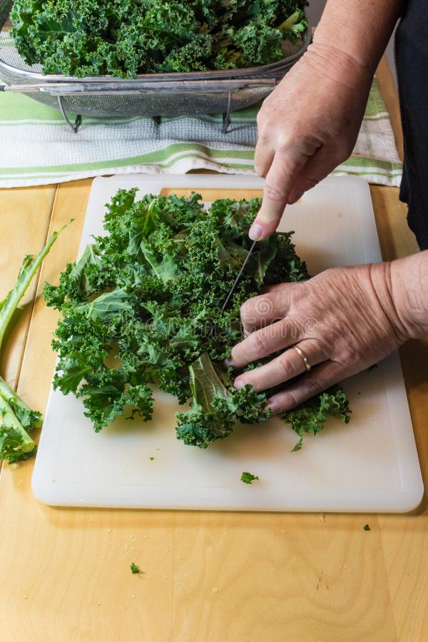 Hands of a woman using a knife to coarsely chop kale leaves on a cutting board royalty free stock images