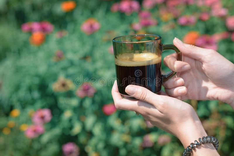Hands of a young woman holding a cup of coffe in the garden lit by sunlight. stock photo
