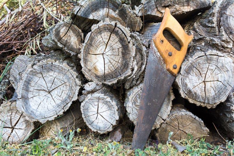 Handsaw velho que descansa em uma pilha de troncos de madeira da madeira serrada foto de stock royalty free