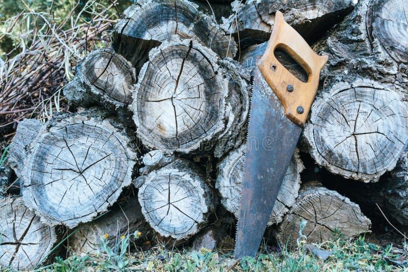 Handsaw viejo que descansa sobre una pila de madera de construcci?n de madera Representación de la forma de vida rural foto de archivo