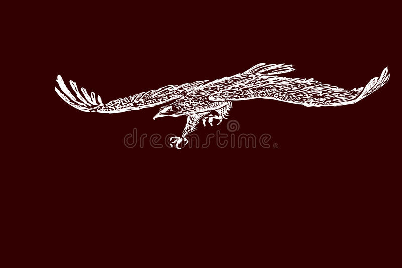 Handschets van een adelaar tijdens de vlucht stock afbeelding