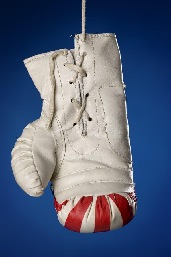 Handschoen royalty-vrije stock afbeelding