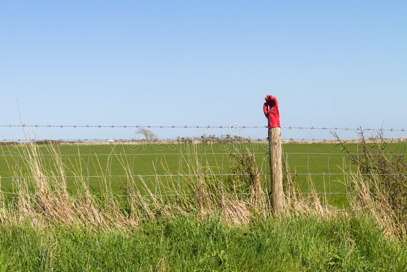 Handschoen op een post, Swanage, Dorset, het UK stock foto's