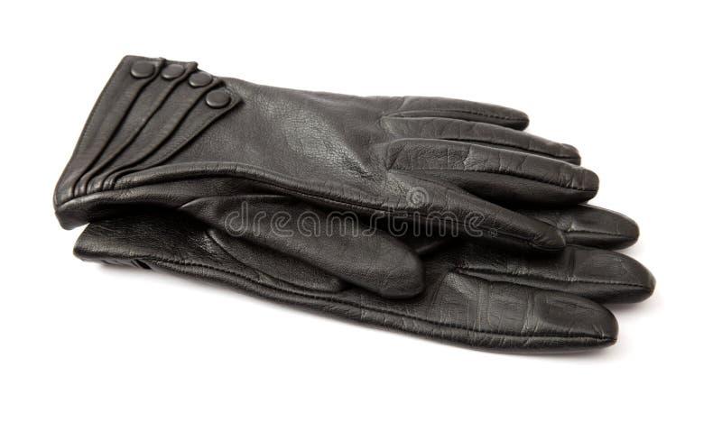 Handschoenen stock foto