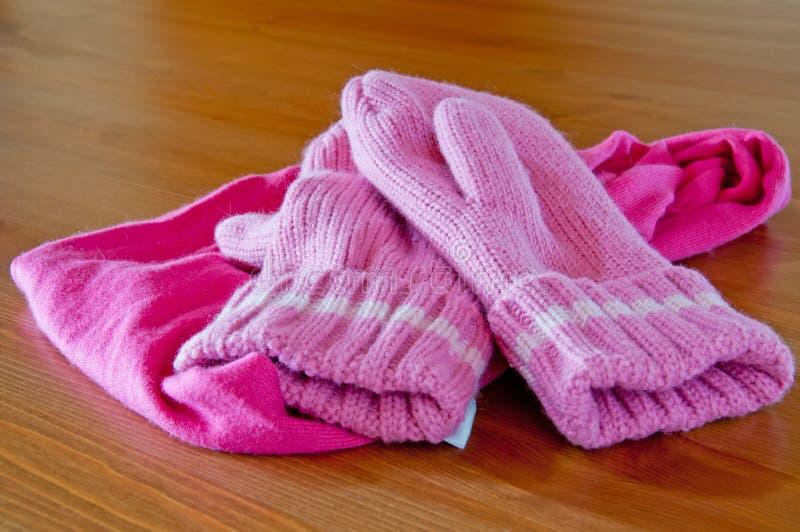 Handschoenen en Sjaal royalty-vrije stock afbeeldingen
