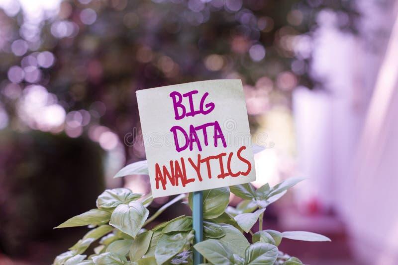 Handschriftentexte, die Big Data Analytics schreiben Konzept bedeutet das Verfahren zur Prüfung großer und unterschiedlicher Date stockbild