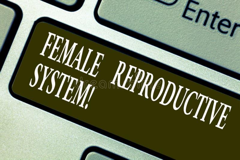 Handschriftstext, der weibliches Reproduktionssystem schreibt Konzeptbedeutung verantwortlich in der Wiedergabe der neuen Nachkom stockbilder