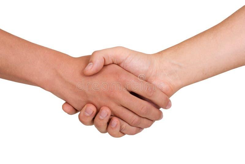 Handshake. Strong masculine handshake closeup on white background stock image