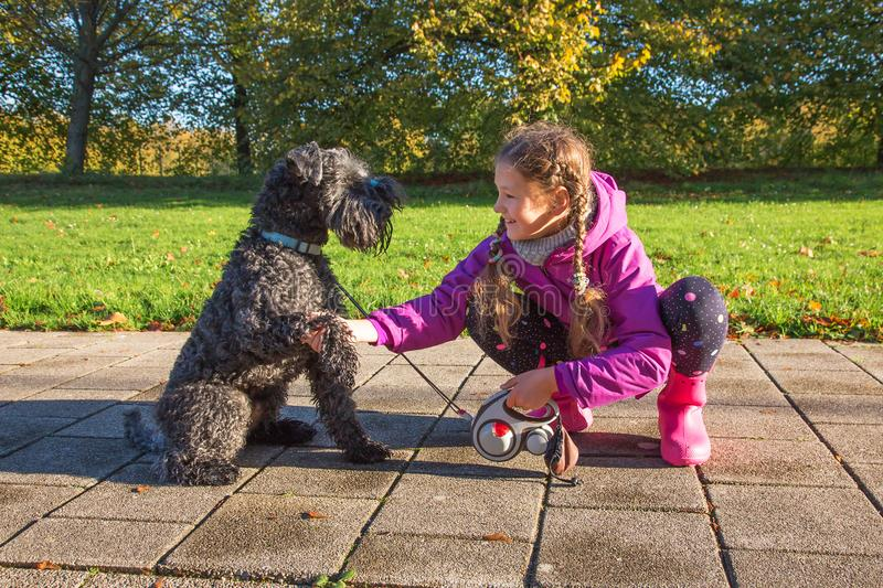 Handshake dog and kid. Friendship with animals stock images