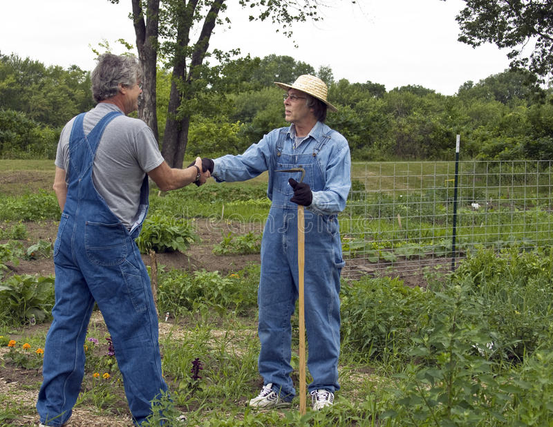 Handshake greeting. Two men in bib overalls greet each other in a garden with a handshake royalty free stock photography