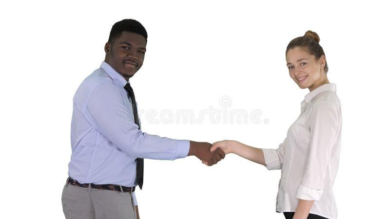 Handskakning av affärskvinnan och affärsmannen som poserar för bilden på vit bakgrund royaltyfria foton