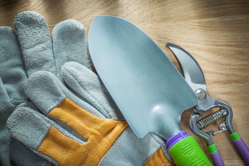 Handskar för handspadesäkerhet arbeta i trädgården pruner på träbräde royaltyfri foto