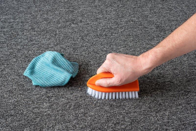 Handskar utan handskar som rengör grå mattan med borste och mikrofiberduk kemtvätt arkivfoton