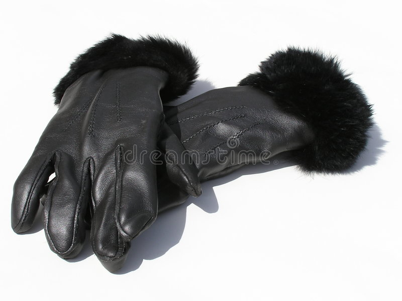 Handskeläder Royaltyfri Bild