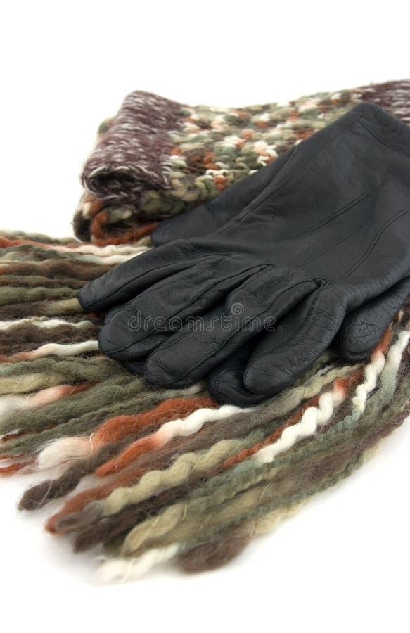 handskescarf royaltyfri fotografi
