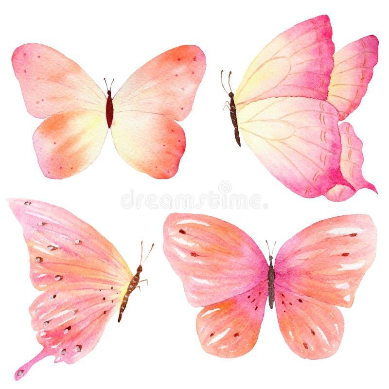 Handskizze des farbigen Schmetterlinges Handgemalte Sammlung des Aquarells Ideal für Einladungen, Karten, Tapeten, druckend auf G lizenzfreie abbildung