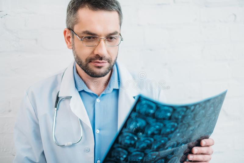 handsome adult doctor examining stock photography