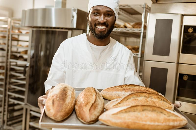 Handsome african american baker with tray of fresh loaves of bread. On baking manufacture royalty free stock images