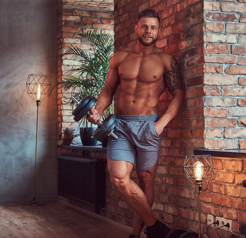 Handsome bearded male with stylish hair and tattoo on his arm, shirtless in shorts, posing with dumbbells, standing stock images
