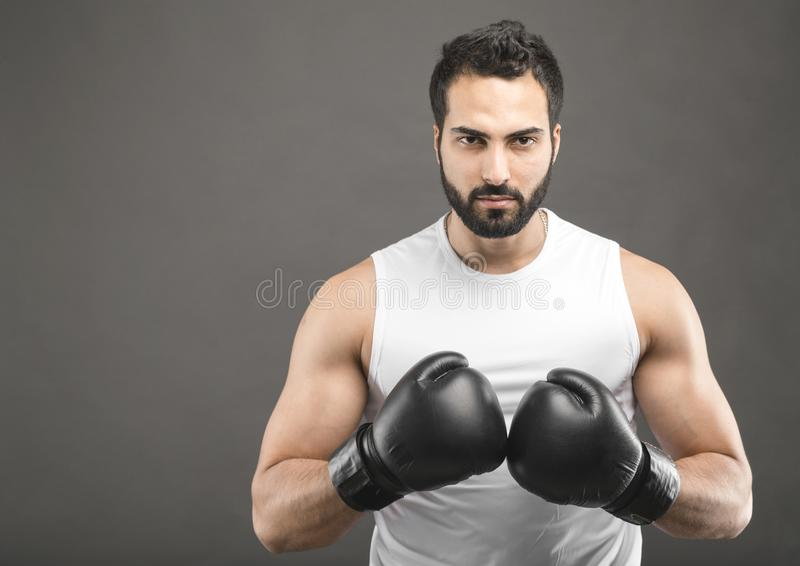 The Boxer Man stock images