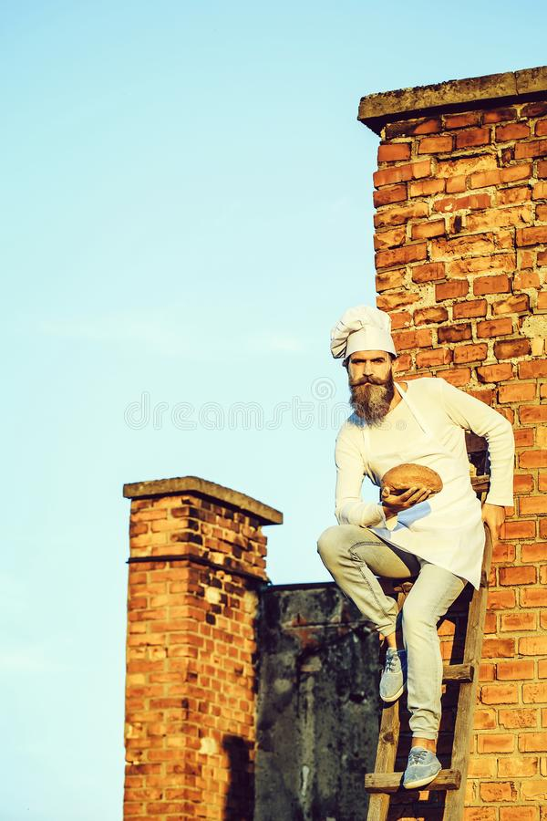 Bearded man cook chef royalty free stock photos