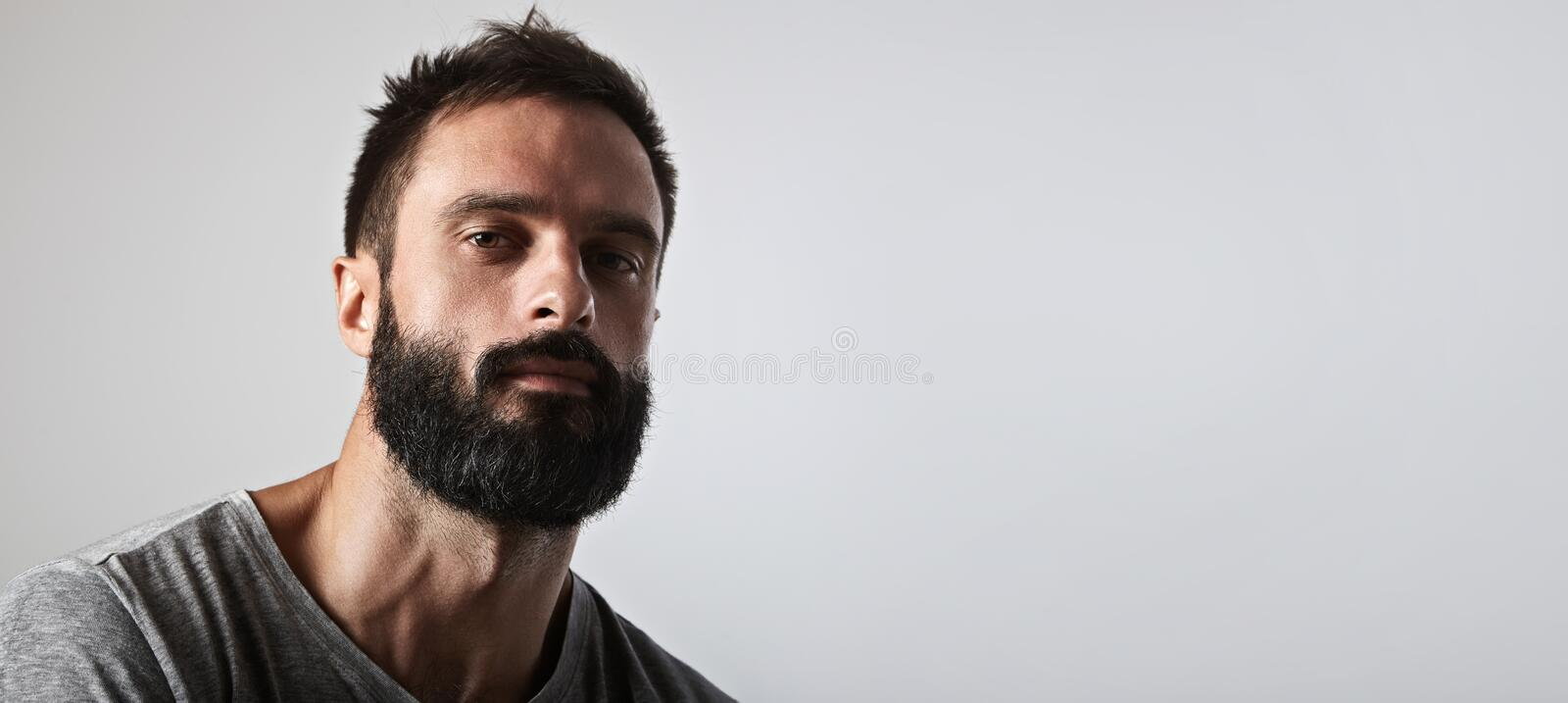 Handsome bearded man looking at camera royalty free stock photo
