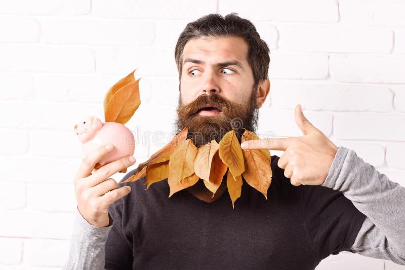Hipster with leaves in beard stock image