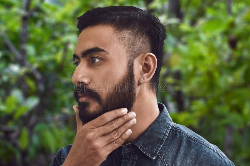 Handsome bearded man touching his beard stock photos