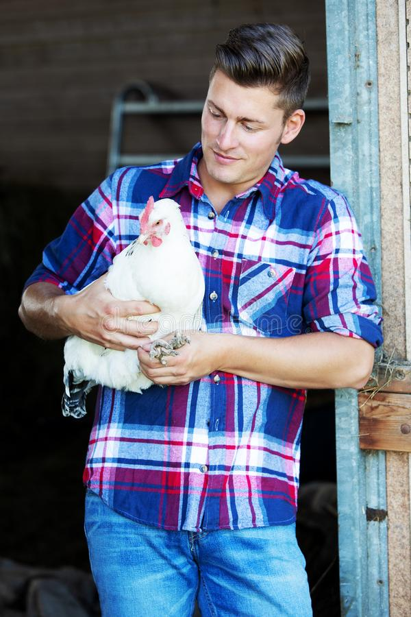 Handsome blond man holding a white chicken royalty free stock photos