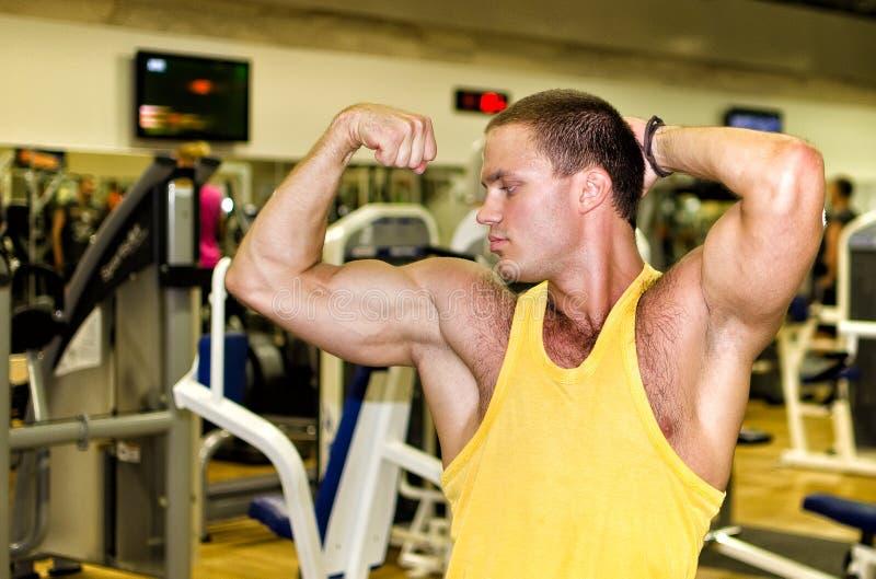 Download Handsome bodybuilder stock image. Image of club, athletic - 25857253