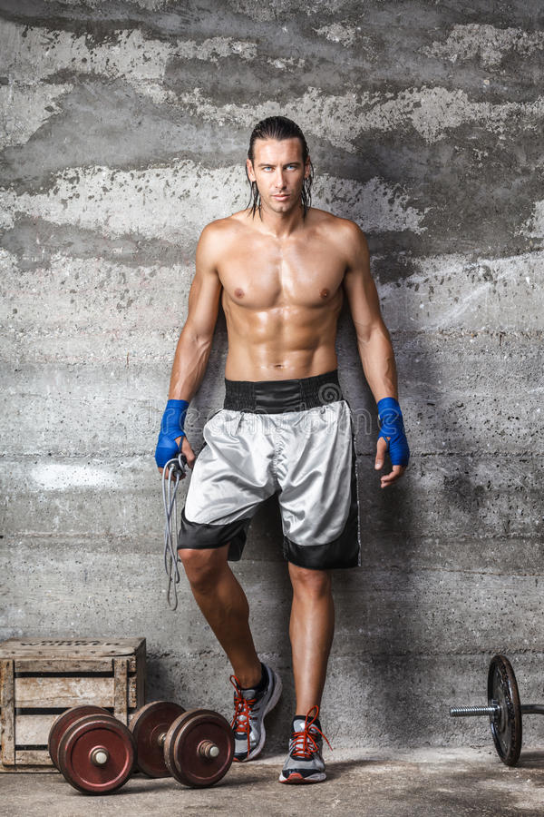 Handsome boxer man standing on the wall and looking at camera stock image