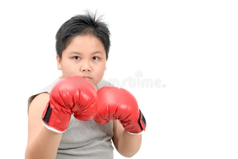 Handsome boy fighting with red boxing gloves. Isolated on white background, exercise and healthy concept stock photography