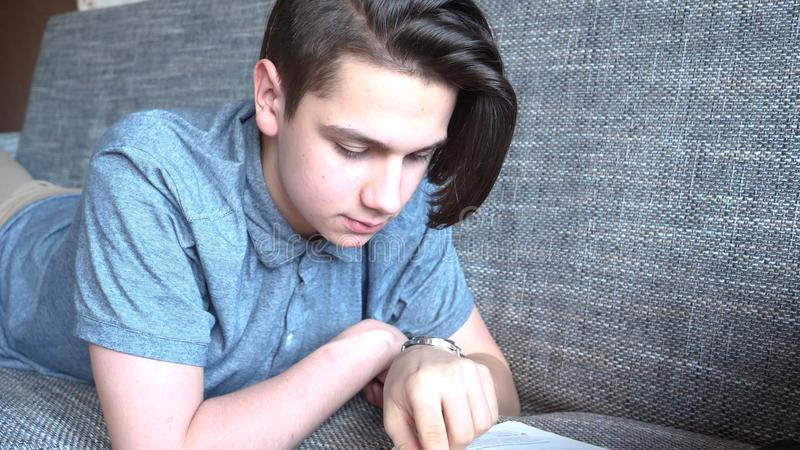 A handsome boy a teenager reads a book on a gray sofa, brown eyes stock photo