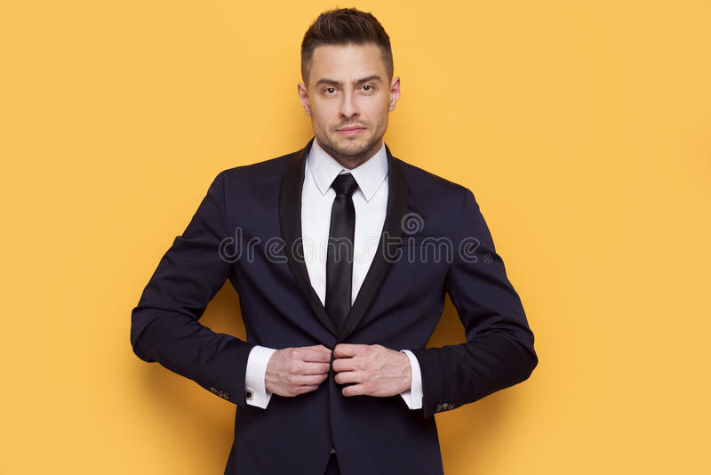 Handsome business man in a business suit royalty free stock photo