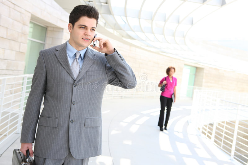 Download Handsome Business Man On Phone Stock Image - Image: 8698463