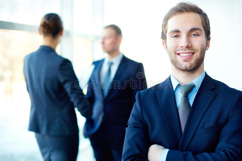 Download Handsome in business stock image. Image of armed, formalwear - 33211017
